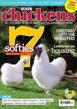 Chicken magazine