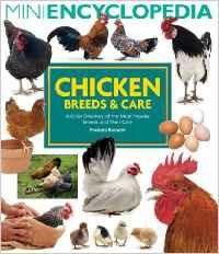 chicken breeds book